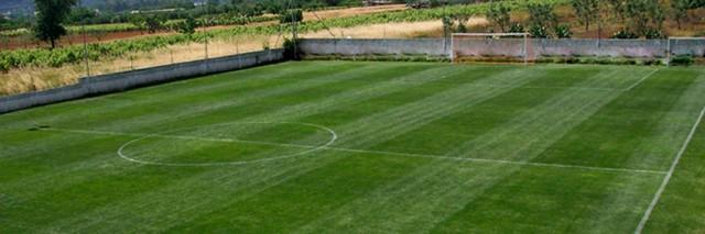 Campo in erba - Marcello Molentino